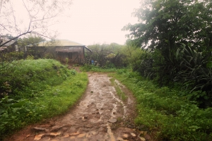 Backyard Trails- Waterfall Hill
