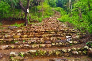 Backyard Trails- Mama Bhanja Hill