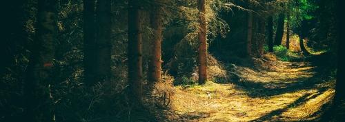 Treks & Trails